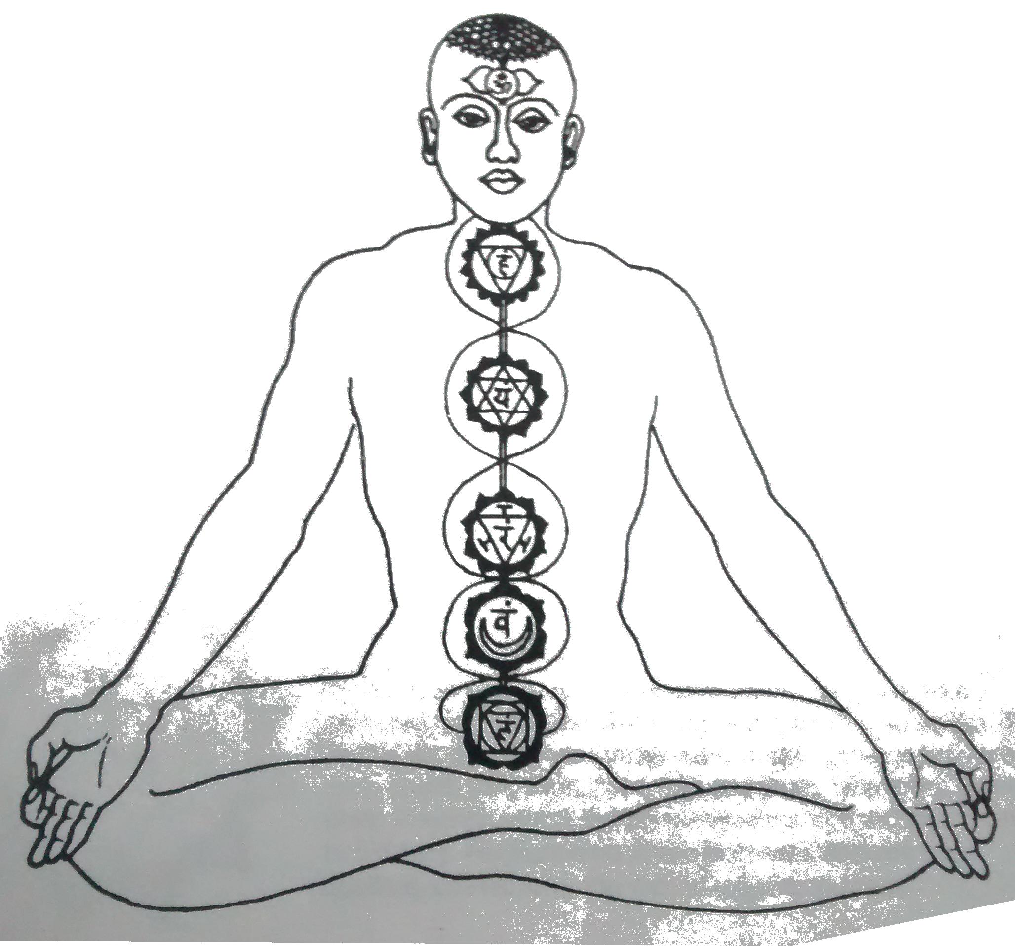 bhakti kutir gyulladáscsökkentő diéta