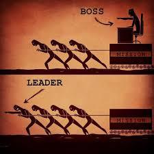 vezető